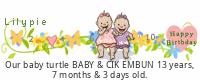 Lilypie Premature Baby tickers